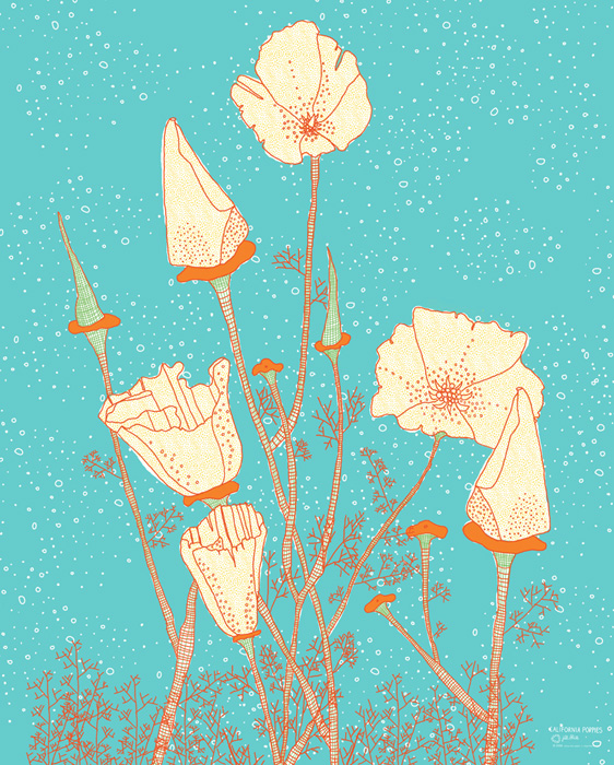 jill-native-poppies-poster-california