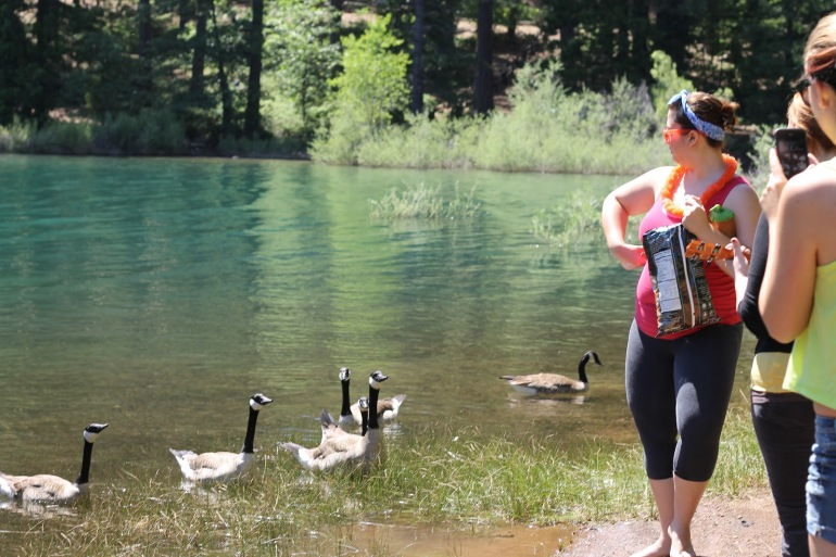 Pollack Pines Girls Weekend Jenkinson Lake Geese 4