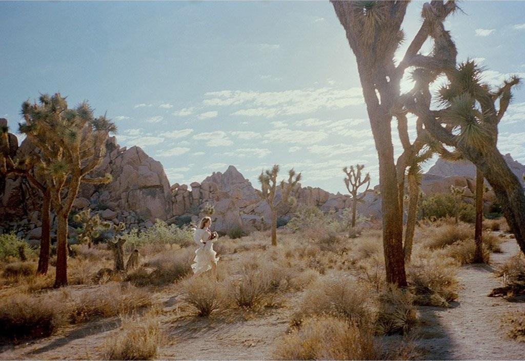 Gia Coppola Untitled VIII Joshua Tree Tappan Collective Photography