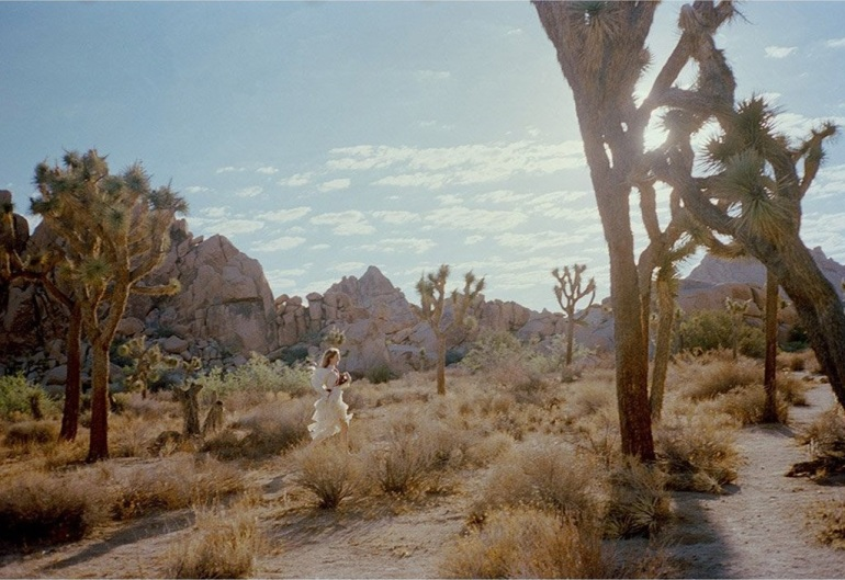 Gia Coppola Untitled VIII Joshua Tree Tappan Collective Photography