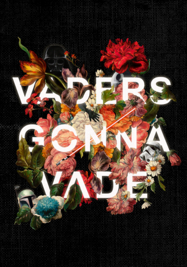 Heather Landis - Vaders Gonna Vade